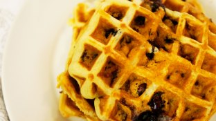blueberry-waffles-close-up-shot-3