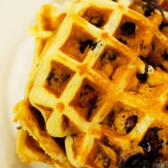 blueberry-waffles-close-up-shot-3