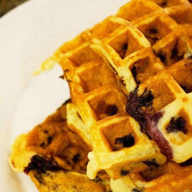 blueberry-waffles-close-up-shot